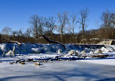 Salt Creek Waterfall. This is a Winter picture of a partially frozen Salt Creek Waterfall located in a Oak Brook, Illinois in DuPage County. Salt Creek is a royalty free stock image