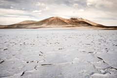 Salt crust in the shore of lagoon and salt lake Tuyajto. Altiplano High Andean Plateau, Los Flamencos National Reserve, Atacama desert, Antofagasta Region stock photos