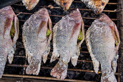 Salt-Crusted Grilled Fish in the local market of Thailand Stock Images