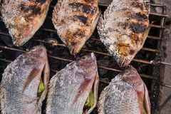 Salt-Crusted Grilled Fish in the local market of Thailand Stock Photography