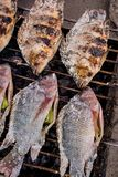 Salt-Crusted Grilled Fish in the local market of Thailand Stock Photo