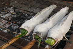 Salt-Crusted Grilled Fish Royalty Free Stock Photography