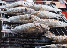 Salt Crusted Grilled Fish on stove Stock Photos