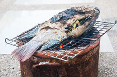 Salt-Crusted Grilled Fish Stock Photo
