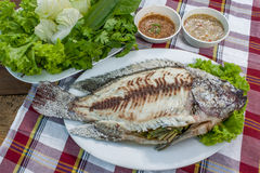 Salt Crusted Grilled Fish Royalty Free Stock Images