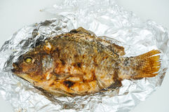 Salt Crusted Grilled Fish Stock Photography