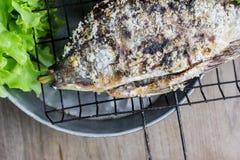 Salt crusted grilled nile tilapia fish Stock Photos