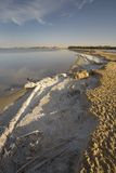 Salt Crusted Shoreline. Of Salt Water Lake, Lake Siwa, Siwa Oasis, Egypt Stock Photos