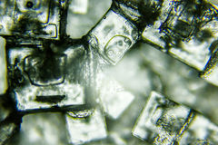 Salt crystals Royalty Free Stock Image