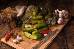 Salt cucumbers briefly stored Stock Photo