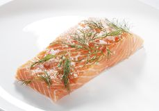 Salt cured salmon Royalty Free Stock Photo
