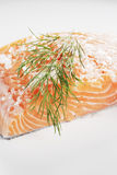 Salt cured salmon Stock Photos