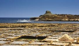 Salt damm i Malta royaltyfri bild