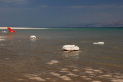 Salt, Dead Sea Stock Images
