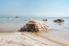 Salt in Dead sea, Israel. Stock Photo