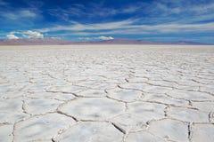 salt delar Royaltyfria Foton