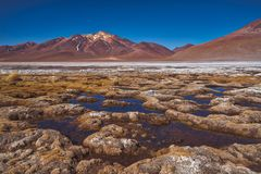 Salt deposits on the lowlands, Atacama Desert stock photography