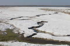 Salt deposits in Saskatchewan, Canada. Fields of natural salt deposits in the prairies of Chaplin, Saskatchewan, Canada Royalty Free Stock Photography