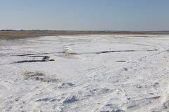 Salt deposits in Saskatchewan, Canada. Fields of natural salt deposits in the prairies of Chaplin, Saskatchewan, Canada Royalty Free Stock Image