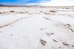 Salt Desert Royalty Free Stock Images