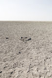 Salt Desert in Namibia Stock Photo