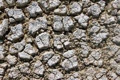 Salt desert namibia Stock Images
