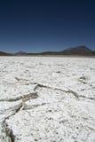 Salt desert texture Stock Image