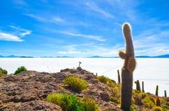 Salt Desert, Uyuni, Bolivia. Details of Fish Island covered by cactus plants Stock Images