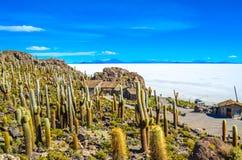 Salt Desert, Uyuni, Bolivia Stock Images