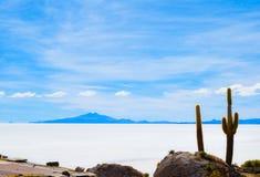 Salt Desert, Uyuni, Bolivia. Fish Island in the middle of Bolivian Salt Flats Royalty Free Stock Images