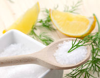 Salt, dill and lemon Stock Photography