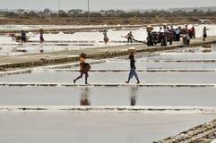 Salt evaporation lakes Royalty Free Stock Images
