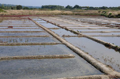 Salt evaporation pond Stock Image