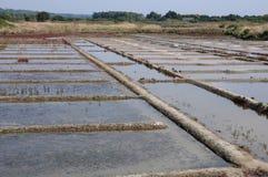 Salt evaporation pond Stock Image