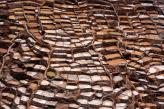 Salt evaporation ponds in Maras in Peru Royalty Free Stock Images
