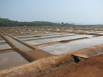 Salt salt extraction food industry India Royalty Free Stock Image