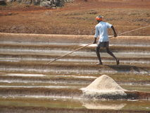 Salt salt extraction food industry India Royalty Free Stock Images