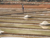 Salt salt extraction food industry India Royalty Free Stock Photography