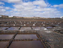 Salt extraction. Salinas, Caleta de Fuste, Fuerteventura, Spain - salt extraction Royalty Free Stock Photography