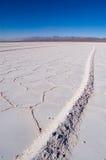 salt extraktion Arkivfoto