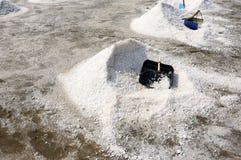 salt fält Arkivfoto