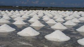 Salt fält för hav Royaltyfri Fotografi