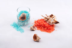 Salt för apelsin- och blåttbad arkivfoto