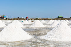 Salt farm Royalty Free Stock Images