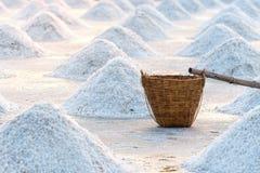 Salt farm, Food industry background scene Royalty Free Stock Images