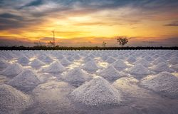 Salt farm in the morning with sunrise sky. Organic sea salt. Evaporation and crystallization of sea water. Raw material of salt. Industrial. Sodium Chloride stock photography