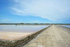 Salt farm at Petchaburi, Thailand. Royalty Free Stock Image