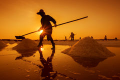 Salt farm with Sunrise in Thailand Stock Photo