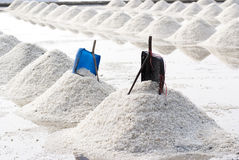 Salt farm in Thailand Stock Image