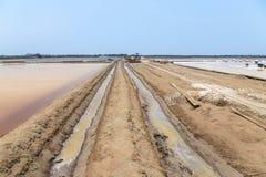 Salt farm in thailand. Royalty Free Stock Photo